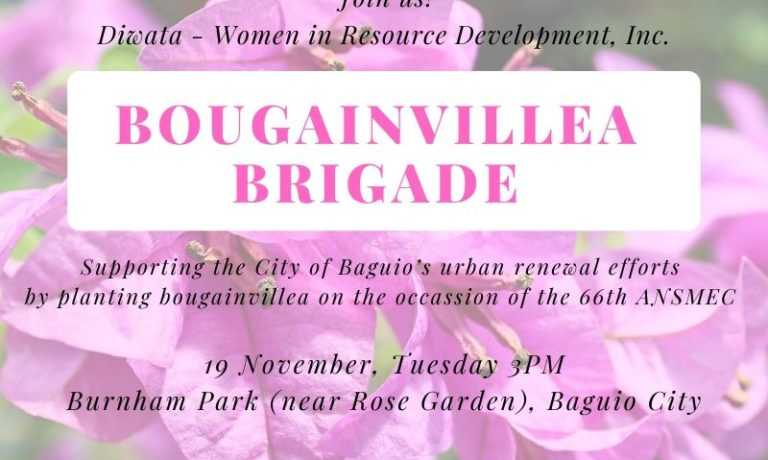 Diwata launches Bougainvillea Brigade